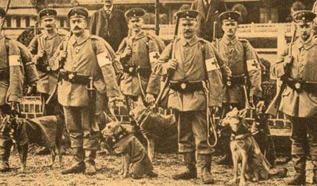 Orígenes del perro Pastor alemán